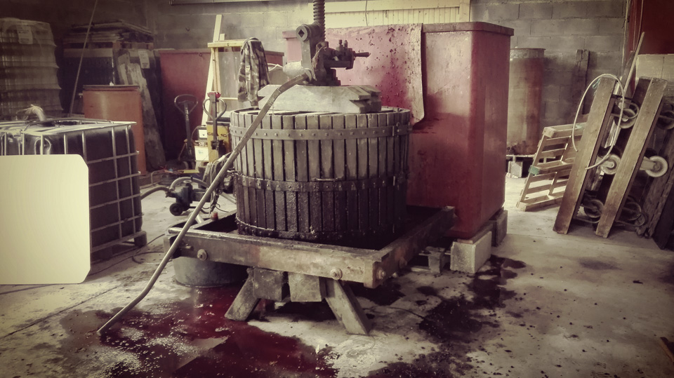 photo vinification n°9